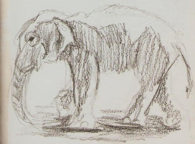 2019/07 - Zoo-sketches - Elephant