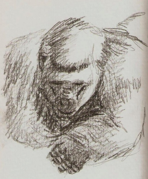 2019/07 - Zoo-sketches - Gorilla