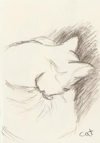 2010/02 - Cat Sketch