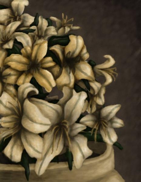 2009/08 - Daylilies