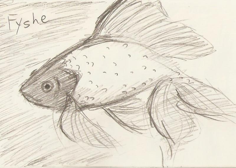 2010/02 - Fish Sketch