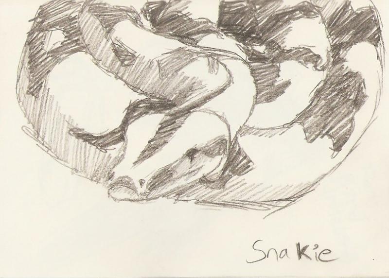 2010/02 - Snake Sketch
