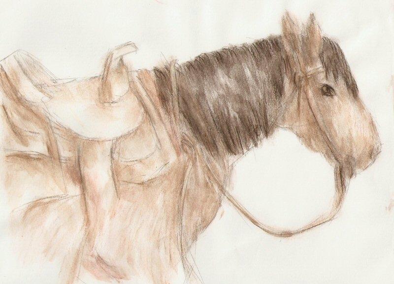 2010/02 - Horse