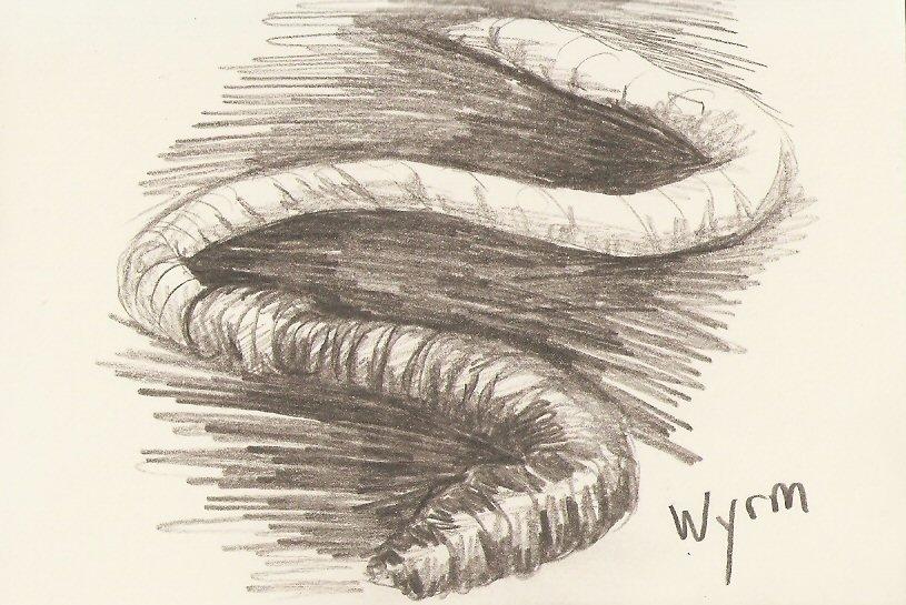 2010/02 - Worm Sketch
